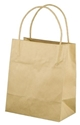 Picture of Carry Bag Brown Paper Twist Handle 200 x 170 + 100 Toddler 110gsm-CARB063430- (SLV-50)