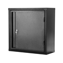 Picture of Steel Cabinet 600H x 600W x 250D - Powdercoated Black With 1 Shelf-FURN358477- (EA)