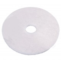 Picture of Floor Pad 43cm Round White Polishing-SCRU374875- (EA)